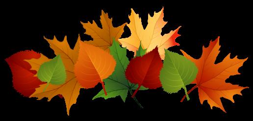 Fall-leaves-fall-clip-art-autumn-clip-art-leaves-clip-art-clipart.png